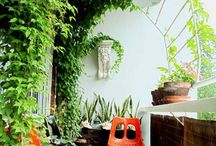 Indoor garden / Grön inredning