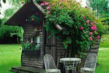 boy garden shed
