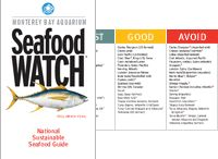 sustainable Seafood Education / by Kimberly Ray
