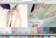 Colour / by Rachael Elliff
