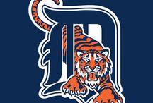 Detroit Tigers / Tigers! / by Mike Levy