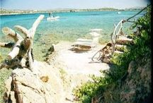 Vacation Rental Beach Houses