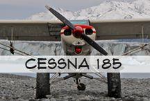 Cessna 185 / Blue Ice Aviation's Cessna 185