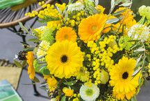 Green Spring /  Small colourful gerbera bouquets that makes your spring come to life in your house
