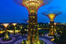 ✈ Singapore ✈