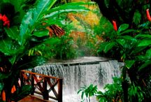 Sélection Nature / Observer la ponte nocturne des tortues au Costa Rica, se baigner dans les bassins naturels au Laos, contempler la beauté d'une aurore boréale en Islande... voici notre sélection de destinations où la nature est reine.