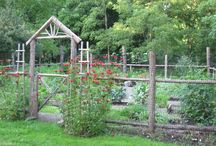 vegie garden fence