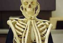 Waiting for UNISA to approve my application