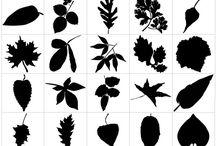 Botanical leaf stencils