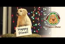 This Diwali, Say No To Crackers