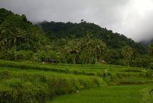 Bali you don't know - Bali jakiego nie znacie - poza szlakami turystycznymi / Bali you don't know -  Bali jakiego nie znacie - poza szlakami turystycznymi z Indo-Explorer.com