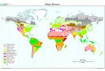 Inglese geografia