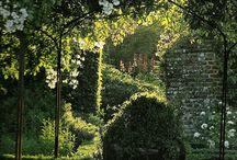 White Gardens