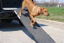 Pet Accessories / WeatherTech offers accessories for our furry, four-legged family members