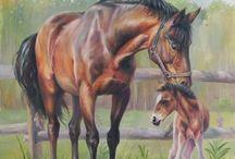 Pferdebilder zum Zeichnen