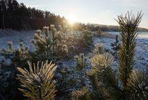 Estonia / Beautiful photos from Estonia