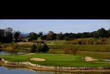 Golf / by Steven Demeter