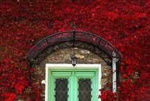 Вход в дом / Входить в красиво оформленный дом – это сплошное удовольствие.