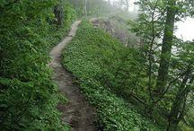 Paths to wonder