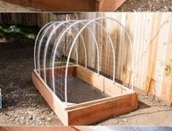 Gardening Ideas / Creating containers, raised beds, and homemade greenhouses for DIY gardening projects.