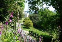 Pentillie Gardens