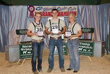 Master Showmanship / by Illinois Farm Bureau Youth Ed