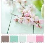 Pink aqua life