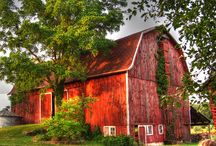 Olde Barns~Horse Stables... / by Denise Linney