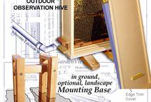 Display Hives