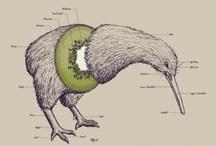 Art - NZ
