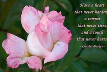 Inspirational and beautiful quotations