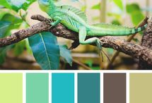 color palette for the home / by Mackenzie Schwarb