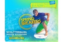 Spring Break with Sand `N Sea / Great activities, locations, and general fun ideas for your Sand 'N Sea, Galveston Island Spring Break adventure!