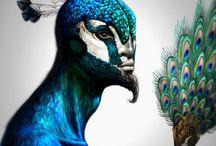 Manusia Burung