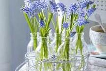 Kvetiny ve vaze