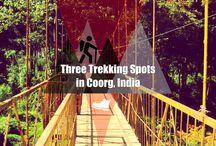 Trekking Poles / Hiking poles, walking sticks, trekking poles, cane for the canyon yo....