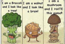 Funny / by Marsha Dewell