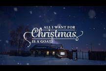Goats Singing your favorite Carols