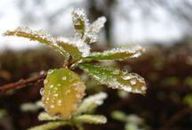 Winter in NRW: Freizeittipps / Hier findet ihr jede Menge Tipps und Ideen für Freizeitspaß in der kalten Jahreszeit.