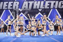 Sapphire Cats - 2015 Blue Debut