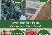 Fall Gardening DIY