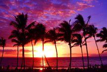Sun.Sand.Aloha / by Lori Vargas