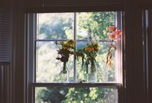 plants are life / by Amanda Salinas