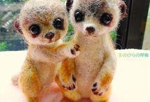 szurikáták - meerkats
