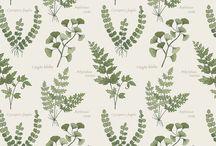 Lewis & Irene - The Botanist