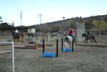 Horse trail obstacles / by Sharon Nelson