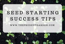 Seeding & Growing Indoors / For those of us growing in colder climates, it can be helpful to start our season early by seeding our plants indoors to prepare for spring. During cold winter months, we can grow microgreens and other plants under lights or in windows.