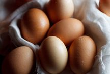 Eggs and omelettes