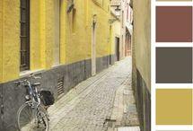 colors / by Linzi Harris