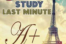 school: study tips / by Erin Hogshead
